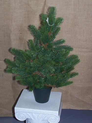 tannenbaum weihnachtsbaume in sehr guter qualit t. Black Bedroom Furniture Sets. Home Design Ideas
