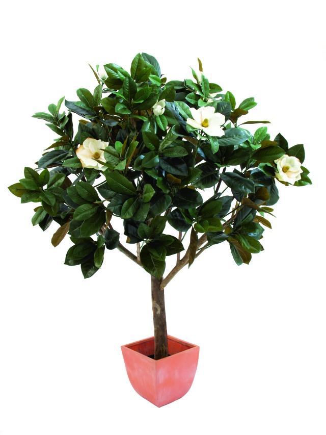 magnolienbaum 783bl tter 12 bl ten 150cm k nstliche pflanzen kunstpalmen zimmerbrunnen. Black Bedroom Furniture Sets. Home Design Ideas