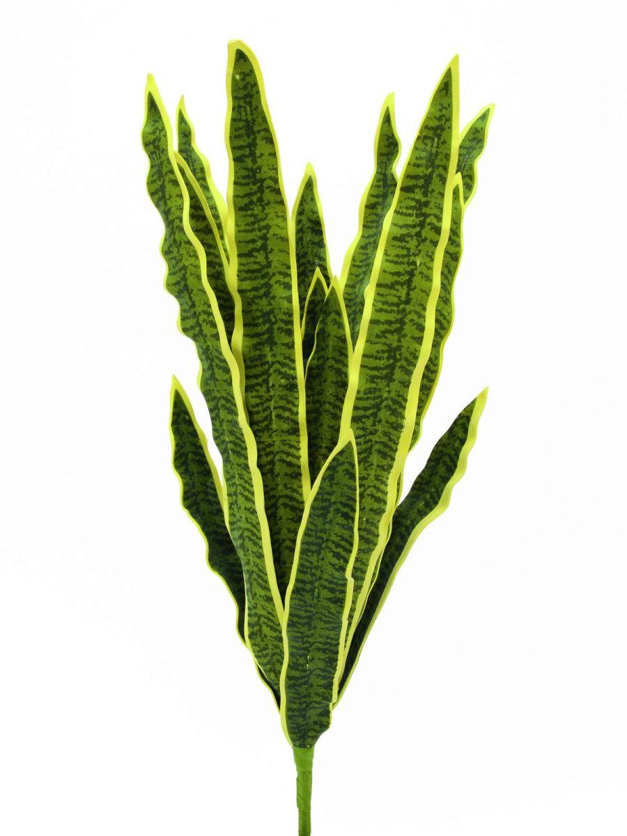 bodenhanf sansevieria eine immergr n pflanze und ein blickfang k nstliche pflanzen. Black Bedroom Furniture Sets. Home Design Ideas